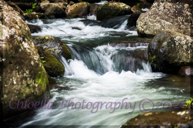 Ancient Hawaiian Stream